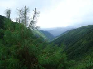 ... Meghalaya, an interesting state to be in ...image: meghalayatours.wordpress.com