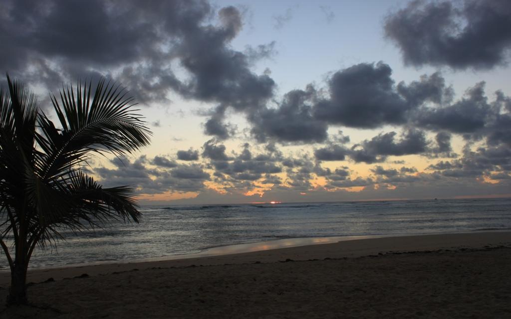 ... dawn on the horizon ...