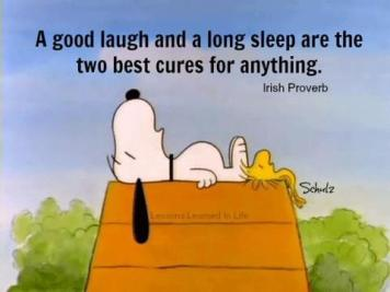 1386855721-a-good-laugh-and-a-long-sleep