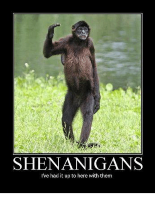 shenanigans-ive-had-it-up-to-here-with-them-4870907