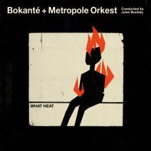 Bokante-3000pxls-1000x1000